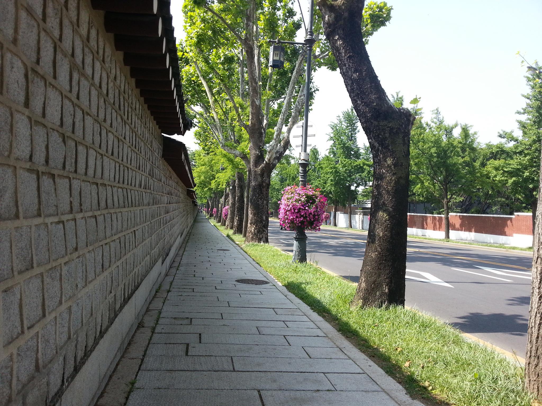 青瓦台(チョンワデ)の前の道を通る