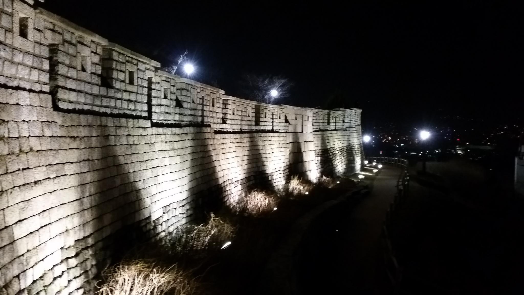 夜の駱山(ナクサン)公園