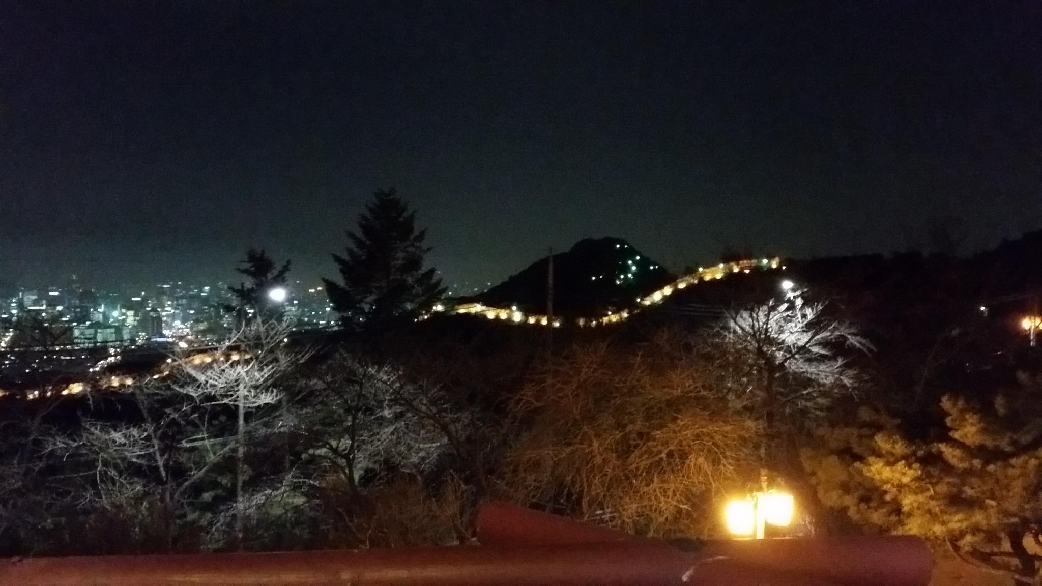 「北岳 八角亭」からの夜景